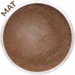 Matte Chataigne Eyeshadow